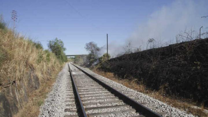 Tribunal de Contas. 10% das pontes e 62% das linhas de comboio precisam de investimento urgente