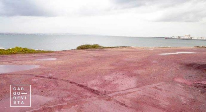 Terminal do Barreiro na gaveta: APA chumba projecto por riscos «significativos para ecossistemas»