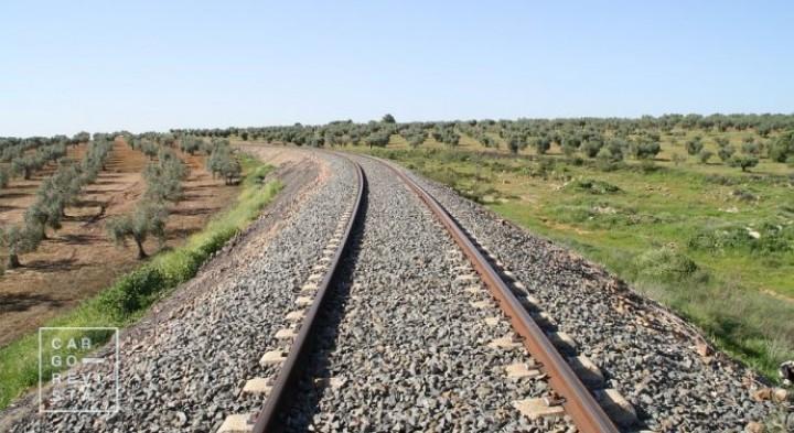 Mota-Engil firma «maior contrato de sempre» para infra-estrutura ferroviária na Nigéria
