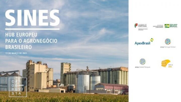 Portugal e Brasil focados em promover Sines como hub europeu para o agro-negócio brasileiro